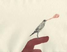 Ewenny Songbird