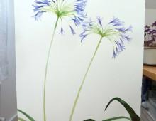 Flower study1