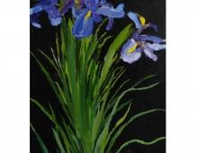 Flower study (Irises)02