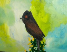 Study of a Dartford Warbler