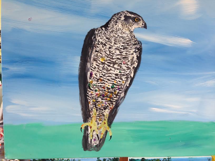 The Hawk Of Llansteffan